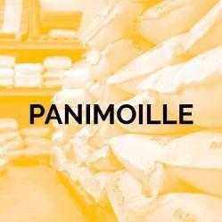 Panimoille